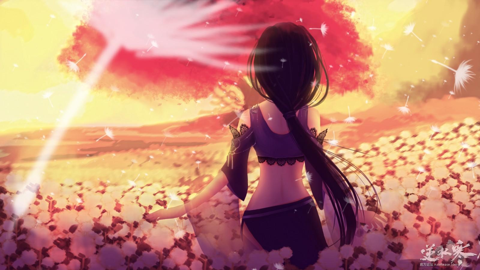 【自在门】【手绘】夕阳下的九灵